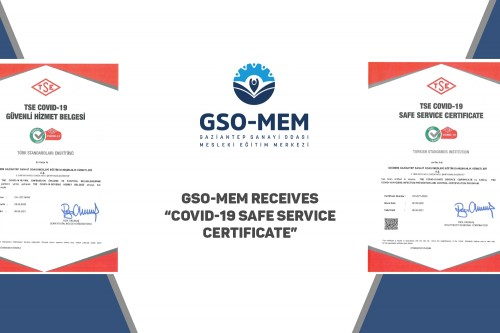 GSO-MEM RECEIVES